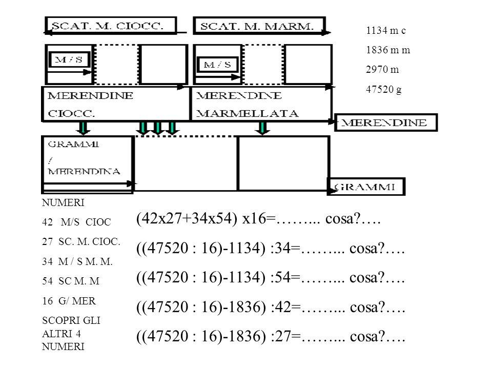 NUMERI 42 M/S CIOC 27 SC. M. CIOC. 34 M / S M. M.