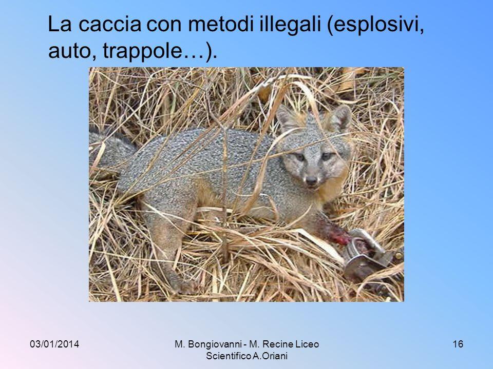 La caccia in zone protette, fuori da periodi prestabiliti, senza licenza, su terreni privati 03/01/2014M.