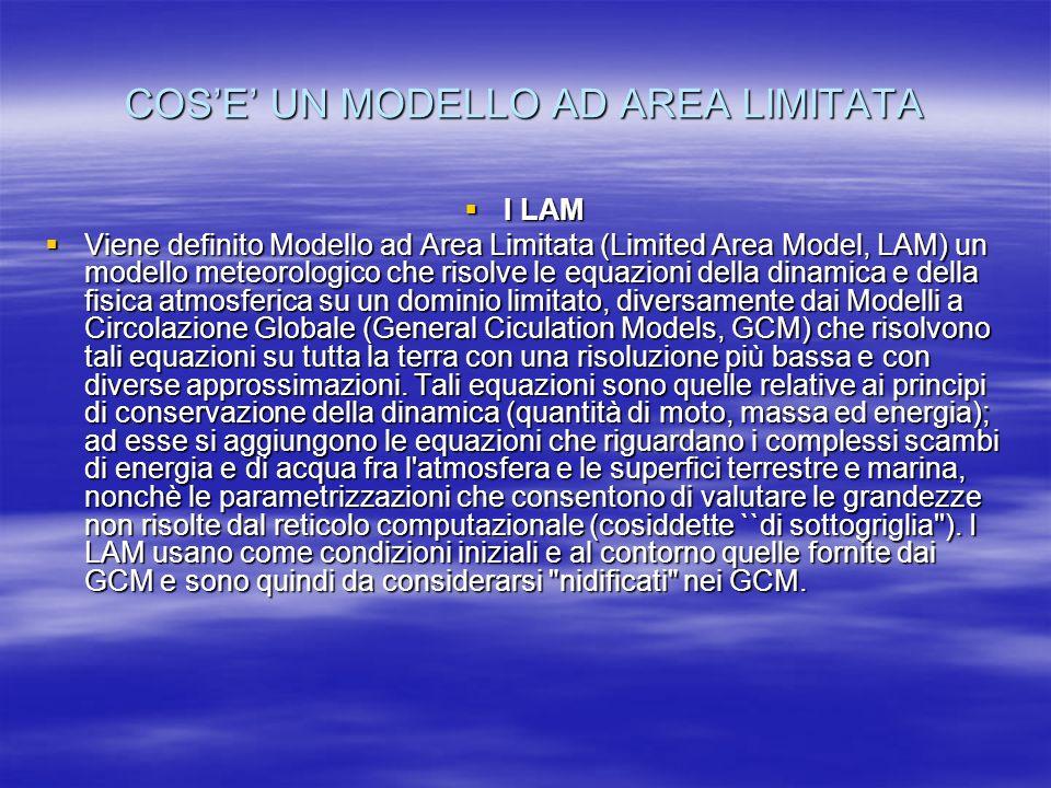 COSE UN MODELLO AD AREA LIMITATA I LAM I LAM Viene definito Modello ad Area Limitata (Limited Area Model, LAM) un modello meteorologico che risolve le