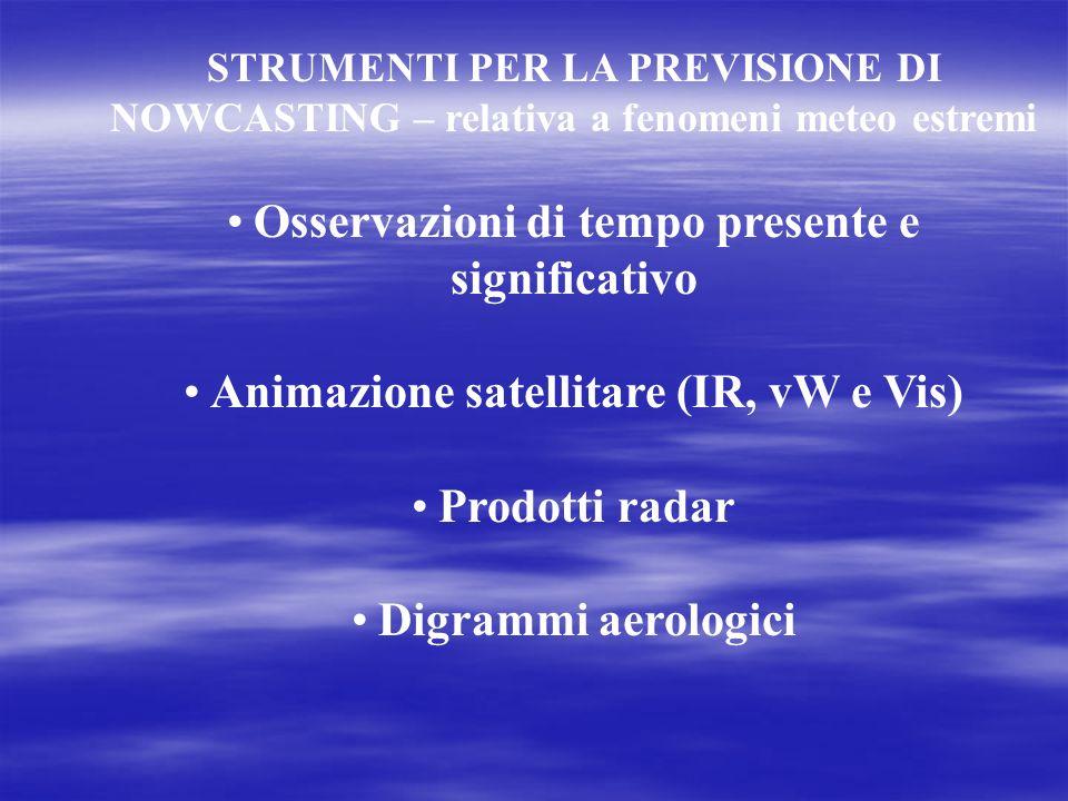 STRUMENTI PER LA PREVISIONE DI NOWCASTING – relativa a fenomeni meteo estremi Osservazioni di tempo presente e significativo Animazione satellitare (I