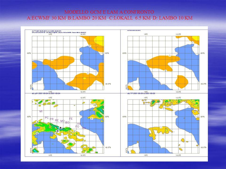 IL BOLAM IL BOLAM Il Bolam con griglia di 21 Km è un buon modello per l area europea, inizializzato su dati ECMWF.