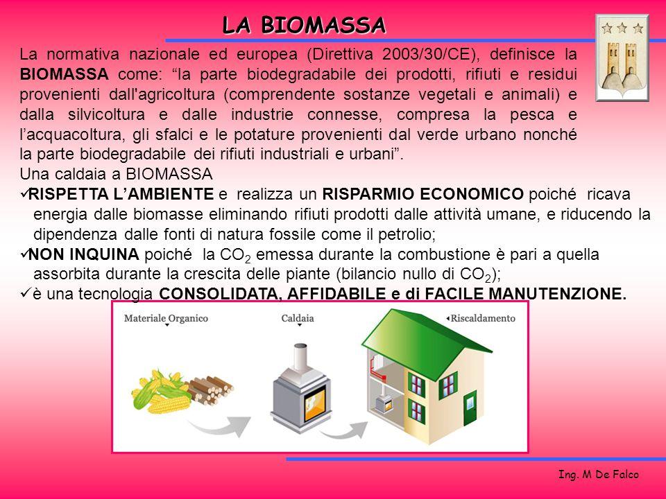 Ing. M De Falco LA BIOMASSA La normativa nazionale ed europea (Direttiva 2003/30/CE), definisce la BIOMASSA come: la parte biodegradabile dei prodotti