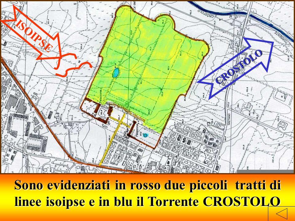 CROSTOLO ISOIPSE Sono evidenziati in rosso due piccoli tratti di linee isoipse e in blu il Torrente CROSTOLO