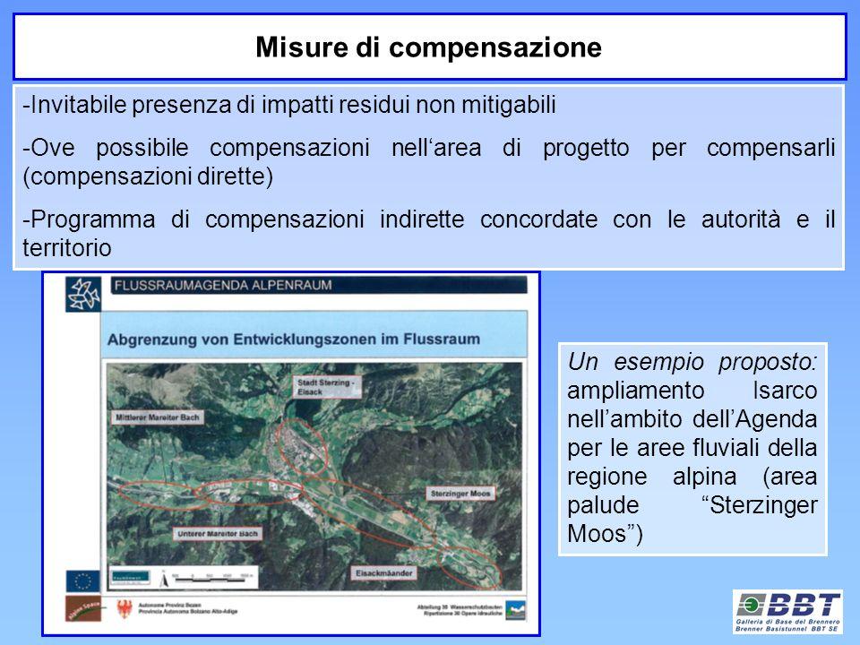 Un esempio proposto: ampliamento Isarco nellambito dellAgenda per le aree fluviali della regione alpina (area palude Sterzinger Moos) Misure di compen