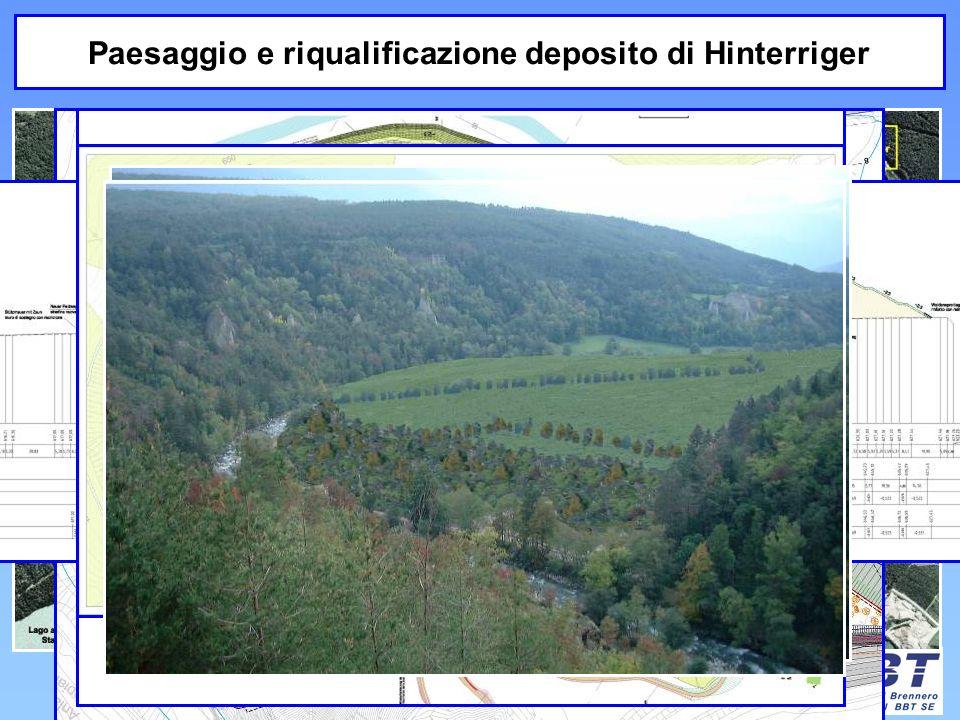 Paesaggio e riqualificazione deposito di Hinterriger