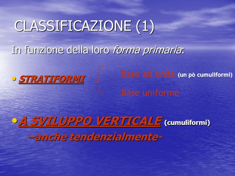 In funzione della loro forma primaria: STRATIFORMI STRATIFORMI A SVILUPPO VERTICALE (cumuliformi) A SVILUPPO VERTICALE (cumuliformi) –anche tendenzial