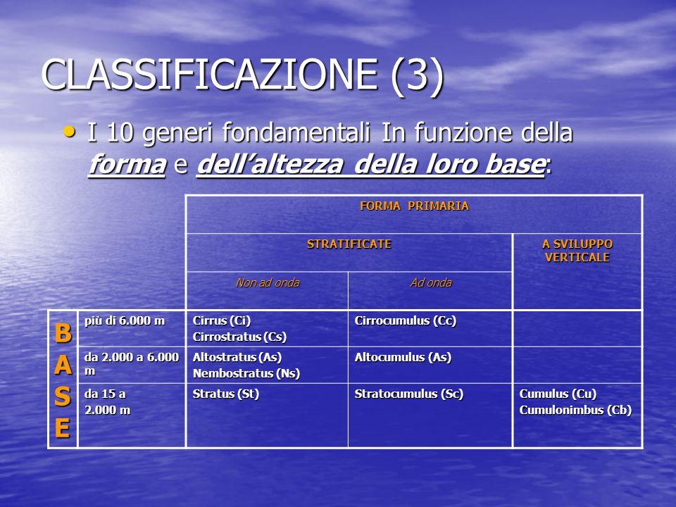 CLASSIFICAZIONE (3) I 10 generi fondamentali In funzione della forma e dellaltezza della loro base: I 10 generi fondamentali In funzione della forma e