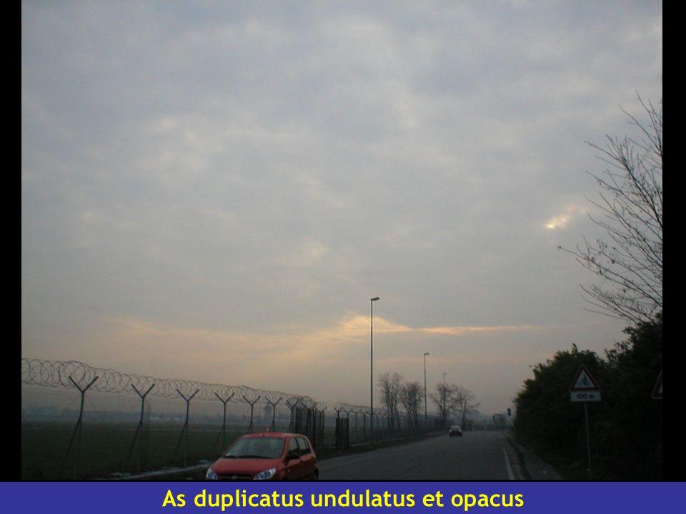 As duplicatus undulatus et opacus