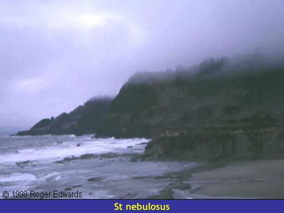 St nebulosus