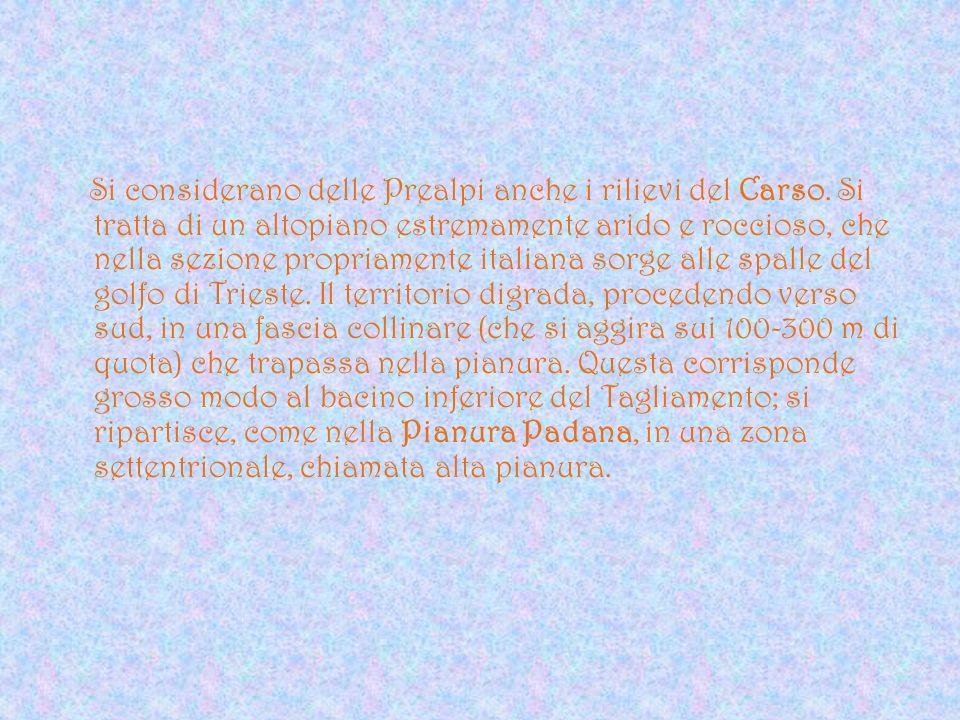Si considerano delle Prealpi anche i rilievi del Carso. Si tratta di un altopiano estremamente arido e roccioso, che nella sezione propriamente italia