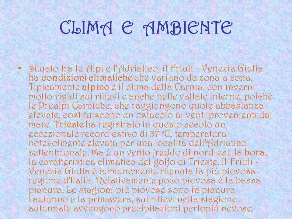 CLIMA E AMBIENTE Situato tra le Alpi e l'Adriatico, il Friuli - Venezia Giulia ha condizioni climatiche che variano da zona a zona. Tipicamente alpino
