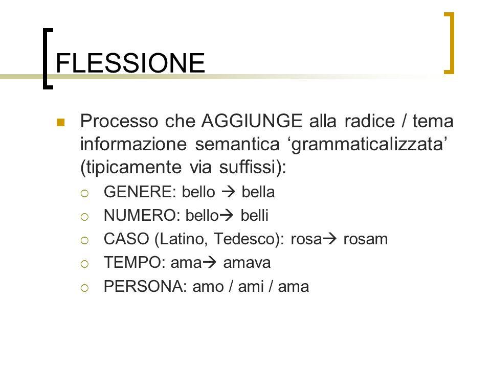 FLESSIONE Processo che AGGIUNGE alla radice / tema informazione semantica grammaticalizzata (tipicamente via suffissi): GENERE: bello bella NUMERO: be