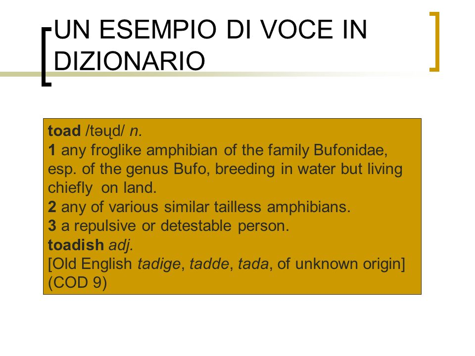 UN ESEMPIO DI VOCE IN DIZIONARIO toad /təųd/ n. 1 any froglike amphibian of the family Bufonidae, esp. of the genus Bufo, breeding in water but living