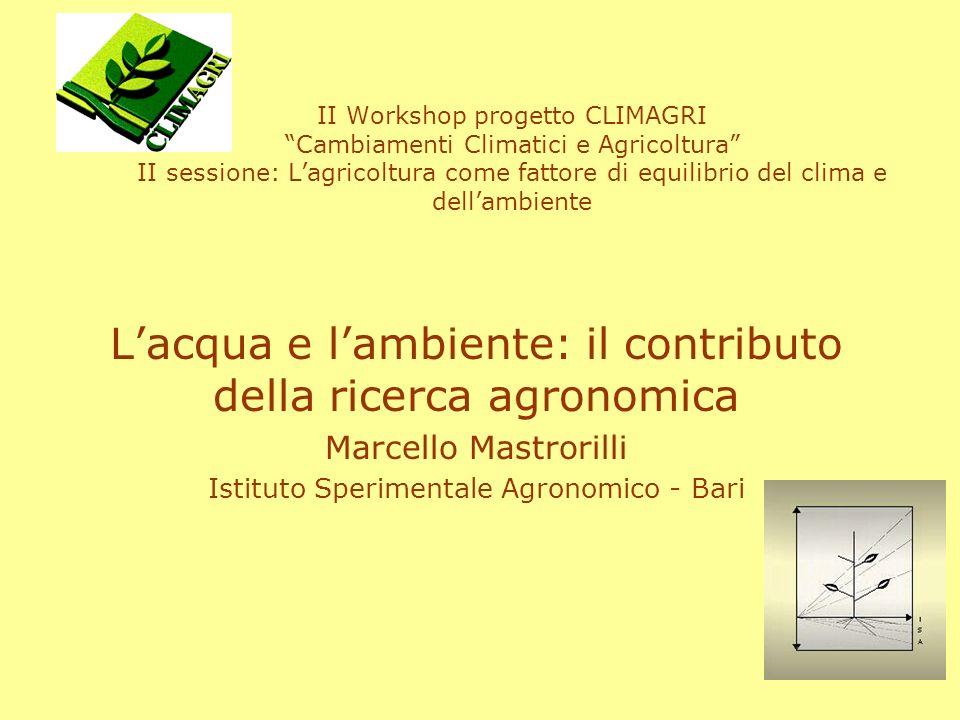 indice analisi della consistenza delle risorse idriche in Italia collaborazione dellintera comunità scientifica il contributo della ricerca agronomica –ottimizzazione delluso delle risorse idriche –la valutazione dellimpatto dellagricoltura –studio dei rapporti tra ambienti naturali, acqua ed agricoltura