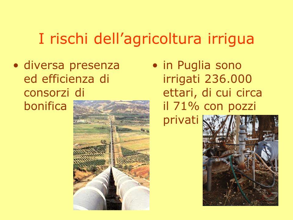 I rischi dellagricoltura irrigua sfavorevoli andamenti meteorologici Precipitazioni annuali