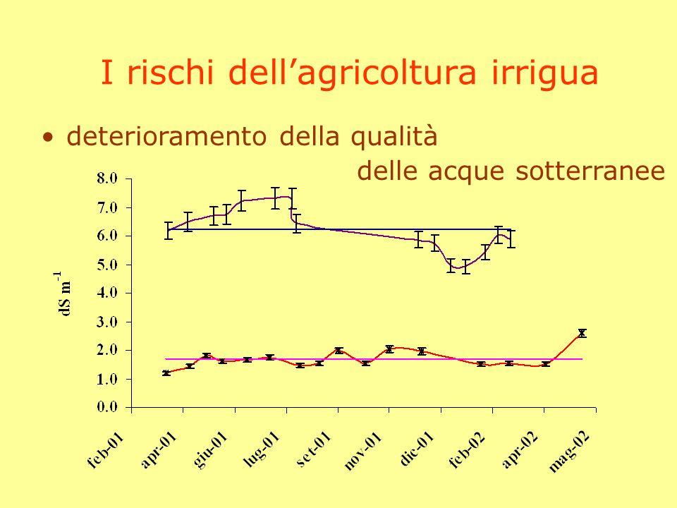 indice analisi della consistenza delle risorse idriche in Italia collaborazione dellintera comunità scientifica il contributo della ricerca agronomica ottimizzazione delluso delle risorse idriche la valutazione dellimpatto dellagricoltura studio dei rapporti tra ambienti naturali, acqua ed agricoltura