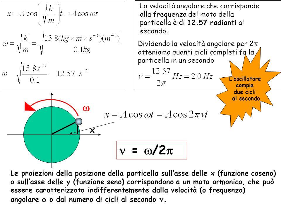x Le proiezioni della posizione della particella sullasse delle x (funzione coseno) o sullasse delle y (funzione seno) corrispondono a un moto armonic