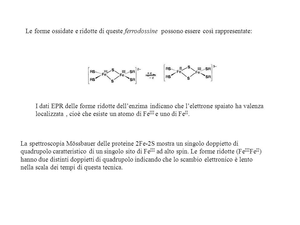 Le forme ossidate e ridotte di queste ferrodossine possono essere così rappresentate: La spettroscopia Mössbauer delle proteine 2Fe-2S mostra un singo