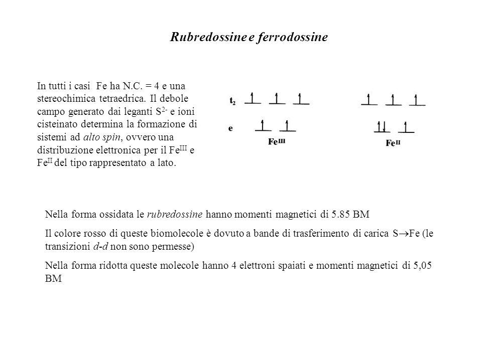 Rubredossine e ferrodossine In tutti i casi Fe ha N.C. = 4 e una stereochimica tetraedrica. Il debole campo generato dai leganti S 2- e ioni cisteinat