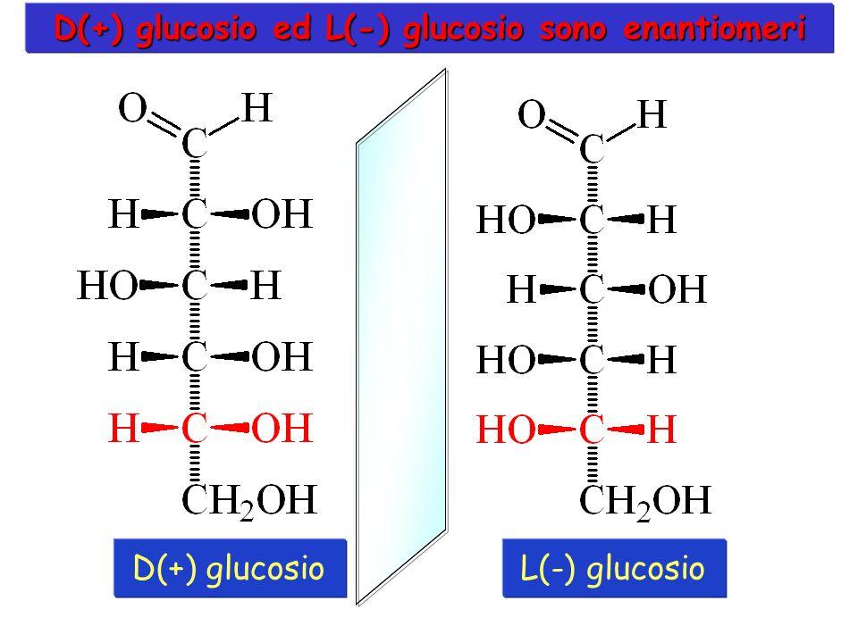 D(+) glucosio ed L(-) glucosio sono enantiomeri D(+) glucosioL(-) glucosio