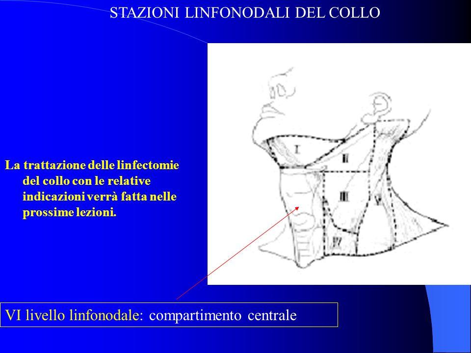 GRAZIE PER LATTENZIONE www.malattietiroide.it