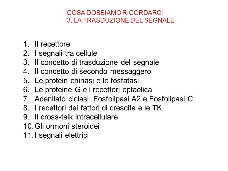 COSA DOBBIAMO RICORDARCI: 3. LA TRASDUZIONE DEL SEGNALE 1.Il recettore 2.I segnali tra cellule 3.Il concetto di trasduzione del segnale 4.Il concetto