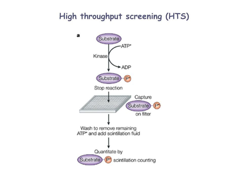 High throughput screening (HTS)
