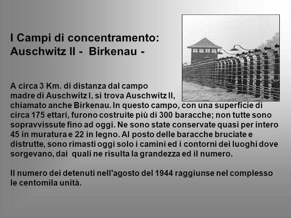 I Campi di concentramento: Auschwitz lI - Birkenau - A circa 3 Km. di distanza dal campo madre di Auschwitz I, si trova Auschwitz II, chiamato anche B