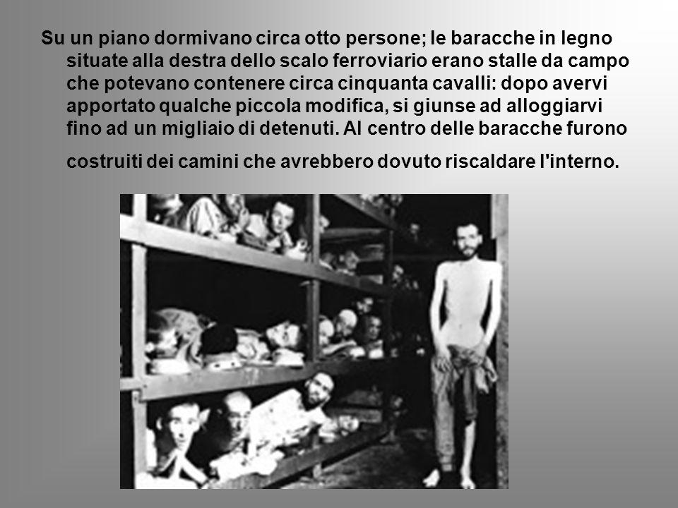 I Campi di concentramento: Terezìn Terezìn fu il maggiore campo di concentramento nazista sul territorio della Cecoslovacchia.