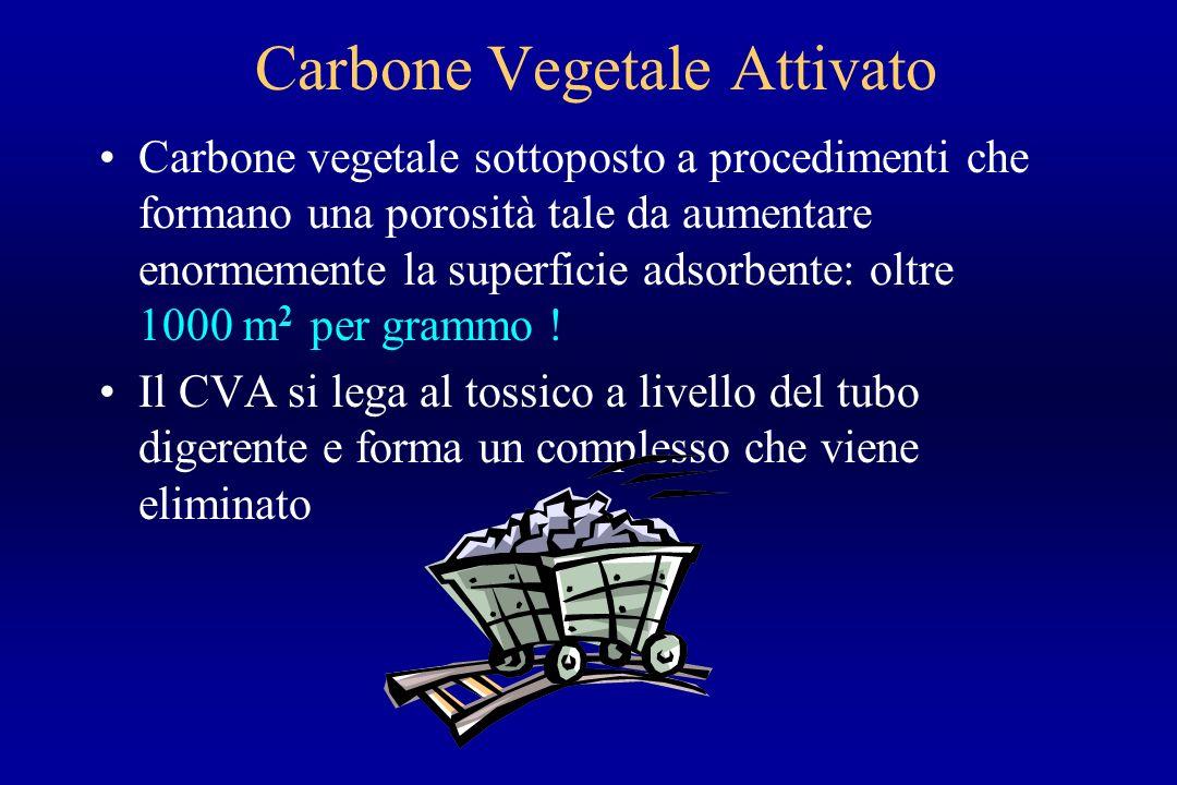 Carbone Vegetale Attivato Carbone vegetale sottoposto a procedimenti che formano una porosità tale da aumentare enormemente la superficie adsorbente: