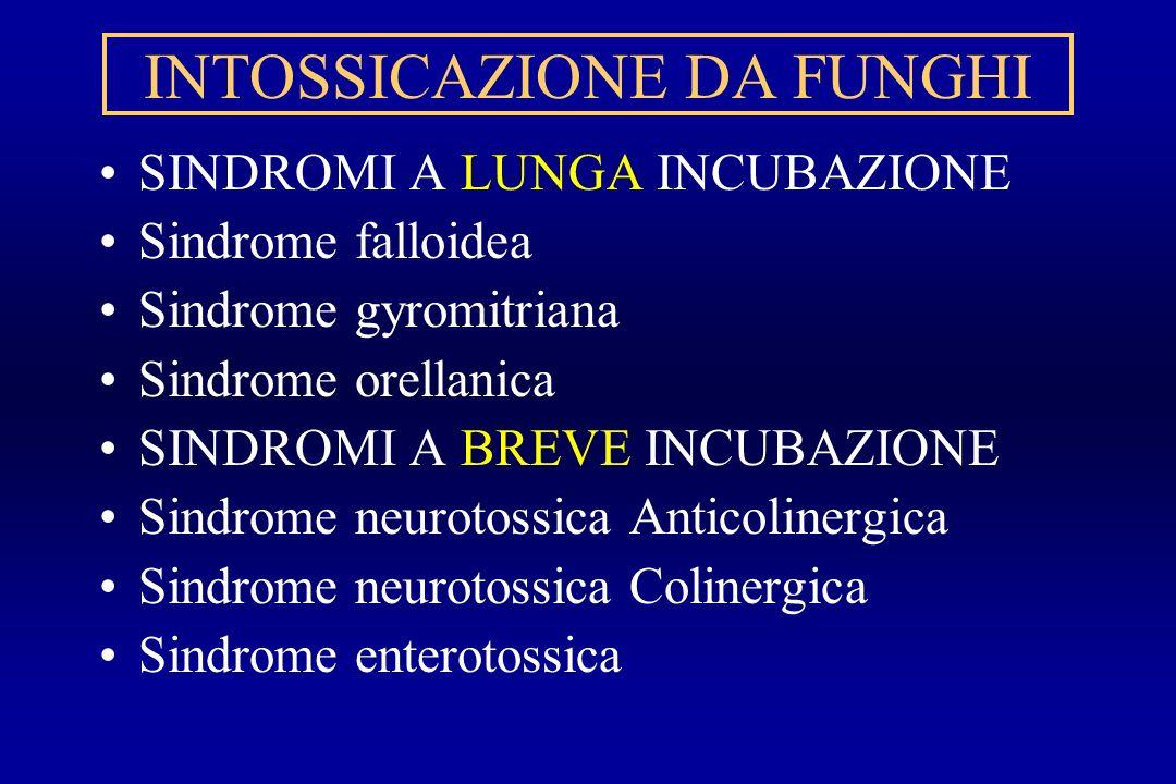 INTOSSICAZIONE DA FUNGHI SINDROMI A LUNGA INCUBAZIONE Sindrome falloidea Sindrome gyromitriana Sindrome orellanica SINDROMI A BREVE INCUBAZIONE Sindro