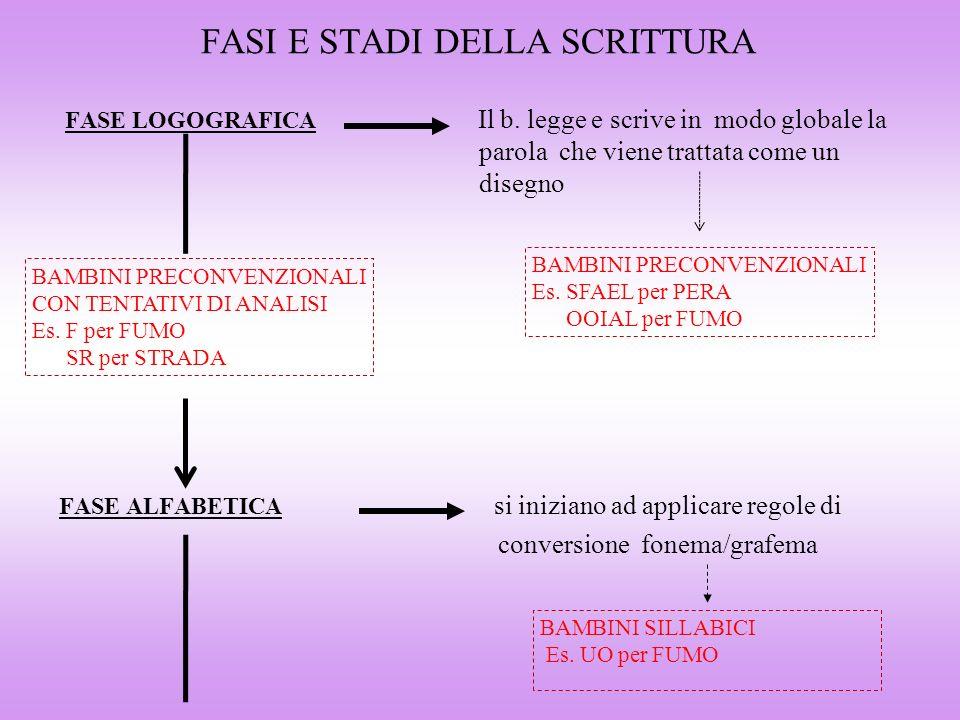 FASI E STADI DELLA SCRITTURA FASE LOGOGRAFICA Il b. legge e scrive in modo globale la parola che viene trattata come un disegno FASE ALFABETICA si ini