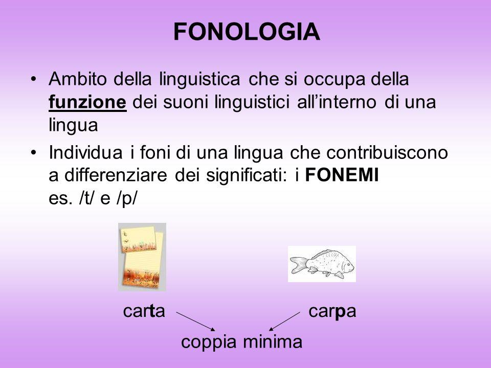 Il Fonema è: Unità funzionale minima Elaborazione astratta; rappresentazione mentale di un suono Non ha significato in sé ma contribuisce a differenziare dei significati funzione distintiva Linsieme dei fonemi di una lingua formano il Sistema Fonologico In base a regole fonologiche specifiche si uniscono a formare unità più grandi Parole