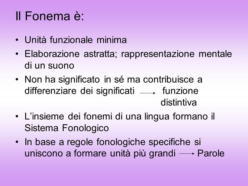 Il Fonema è: Unità funzionale minima Elaborazione astratta; rappresentazione mentale di un suono Non ha significato in sé ma contribuisce a differenzi