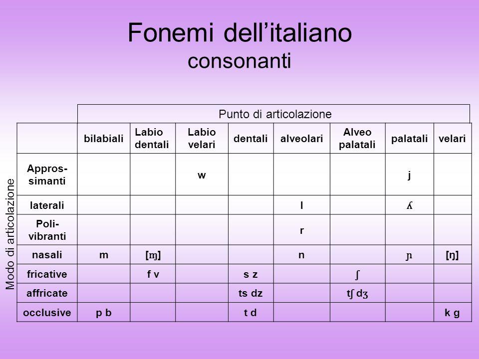 labiopalatalipalatalilabioprevelariprevelarilabiovelarivelari chiuse i u e o medie ɛ ɔ aperte a Fonemi dellitaliano vocali