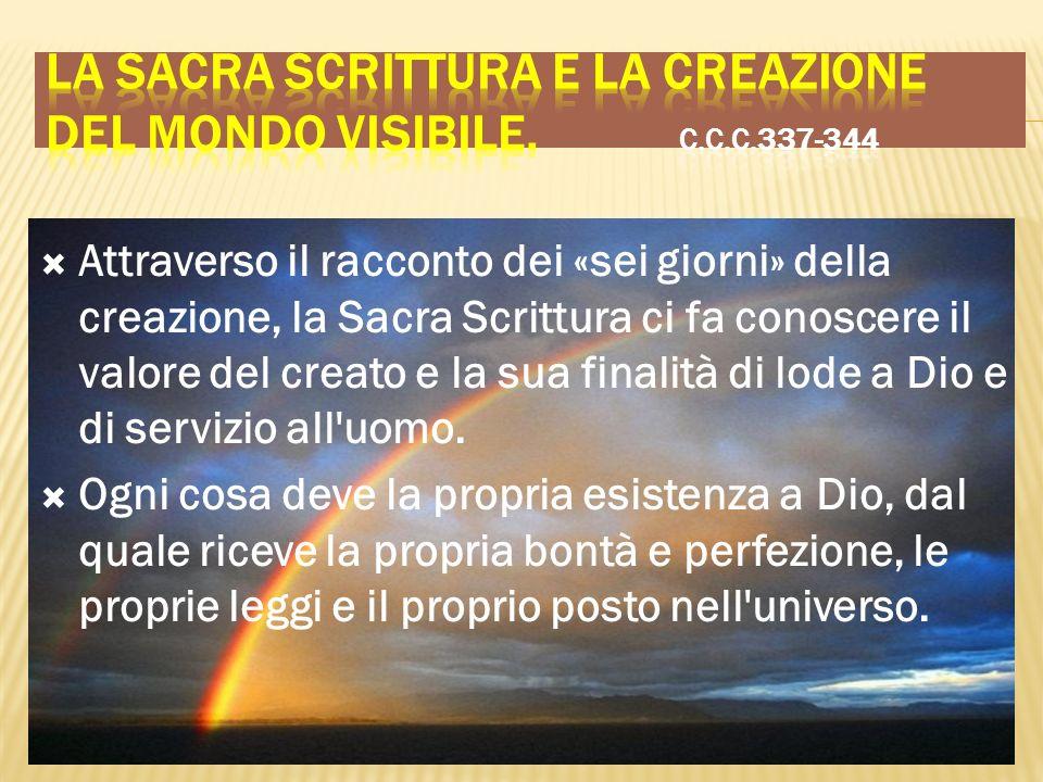 Attraverso il racconto dei «sei giorni» della creazione, la Sacra Scrittura ci fa conoscere il valore del creato e la sua finalità di lode a Dio e di