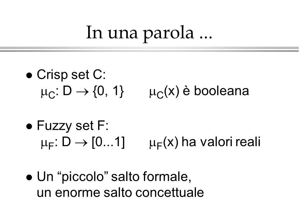 In una parola... Crisp set C: C : D {0, 1} C (x) è booleana Fuzzy set F: F : D [0...1] F (x) ha valori reali l Un piccolo salto formale, un enorme sal