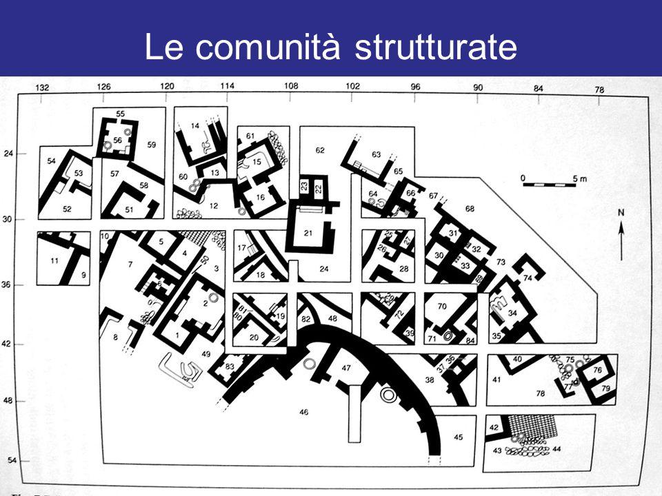 Le comunità strutturate