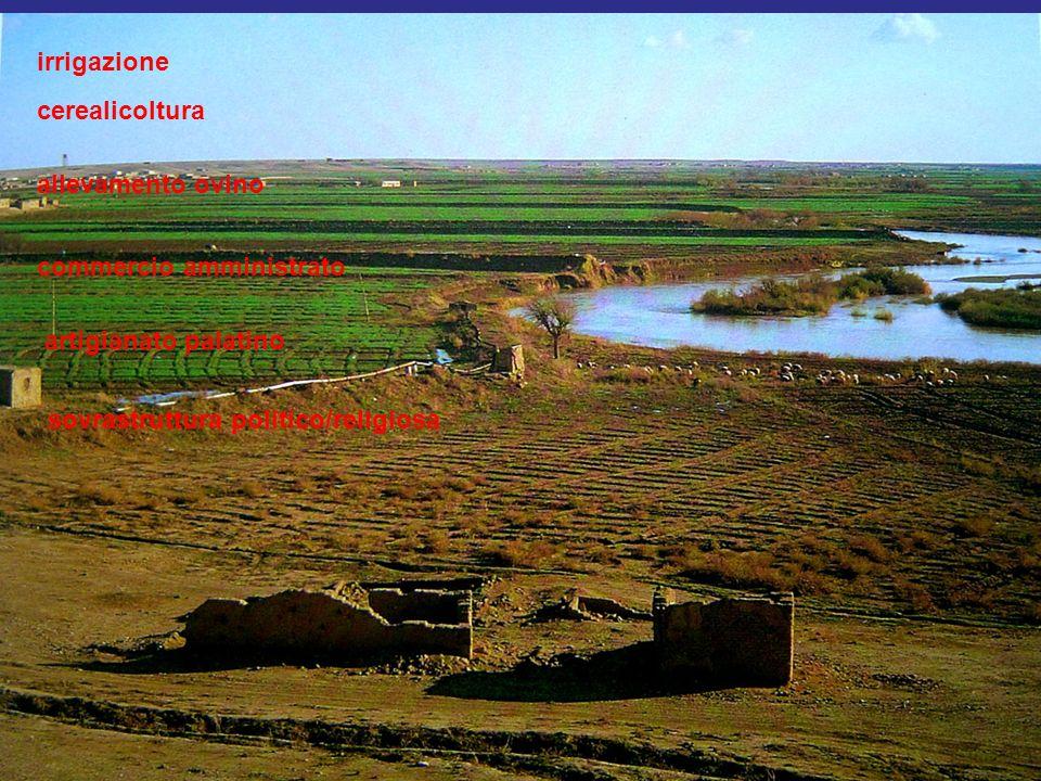 irrigazione cerealicoltura allevamento ovino commercio amministrato artigianato palatino sovrastruttura politico/religiosa