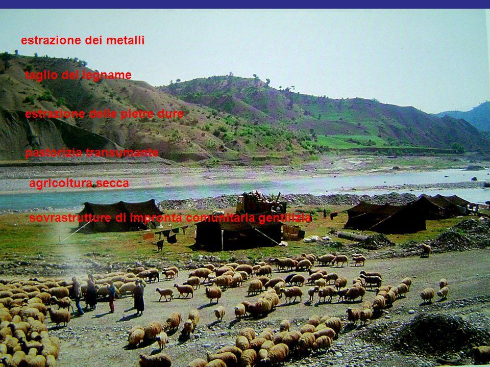 estrazione dei metalli taglio del legname estrazione delle pietre dure pastorizia transumante agricoltura secca sovrastrutture di impronta comunitaria