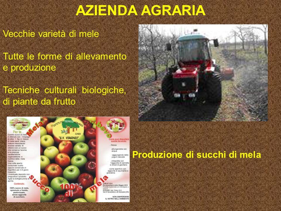 AZIENDA AGRARIA Vecchie varietà di mele Tutte le forme di allevamento e produzione Tecniche culturali biologiche, di piante da frutto Produzione di succhi di mela