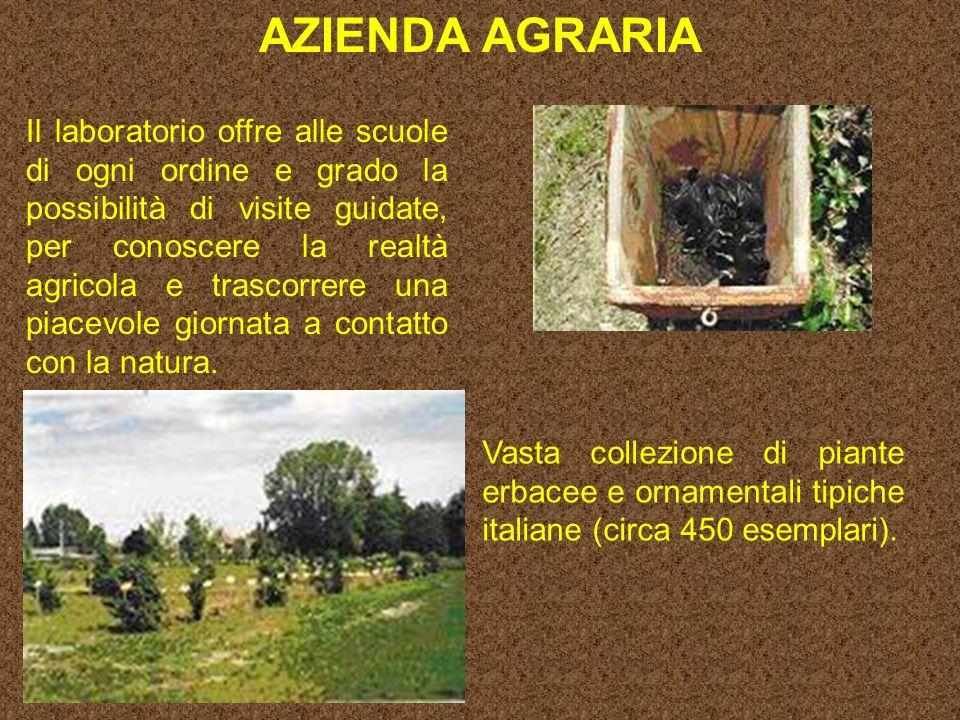 AZIENDA AGRARIA Vasta collezione di piante erbacee e ornamentali tipiche italiane (circa 450 esemplari).