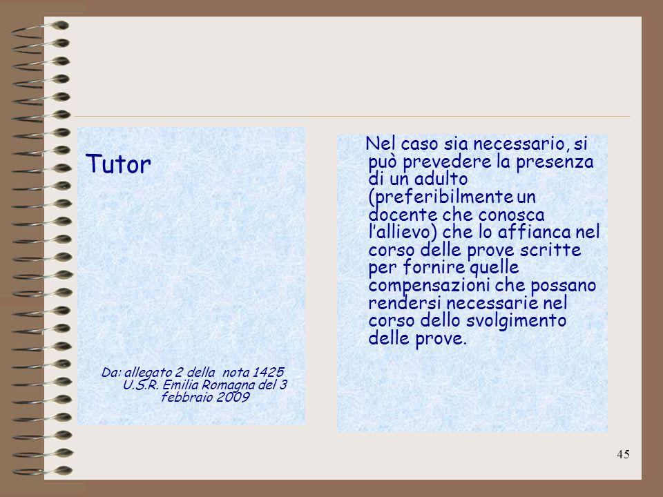 45 Tutor Da: allegato 2 della nota 1425 U.S.R. Emilia Romagna del 3 febbraio 2009 Nel caso sia necessario, si può prevedere la presenza di un adulto (