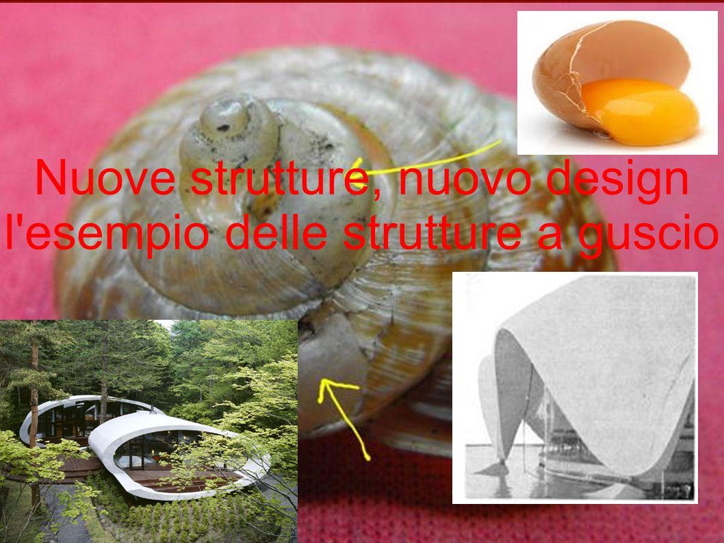 Nuove strutture, nuovo design l'esempio delle strutture a guscio