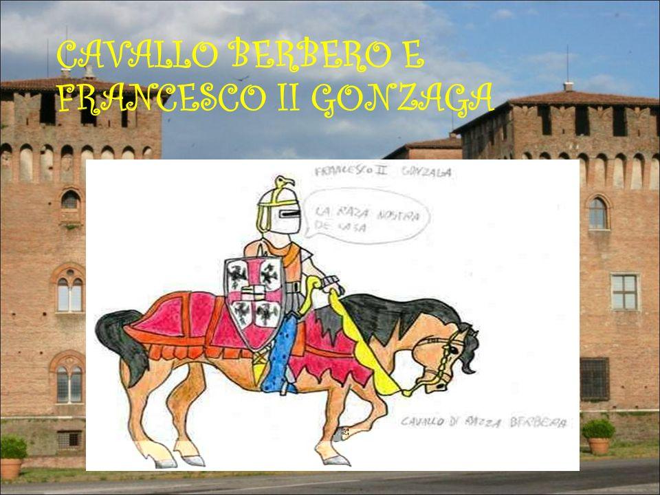 CAVALLO BERBERO E FRANCESCO II GONZAGA
