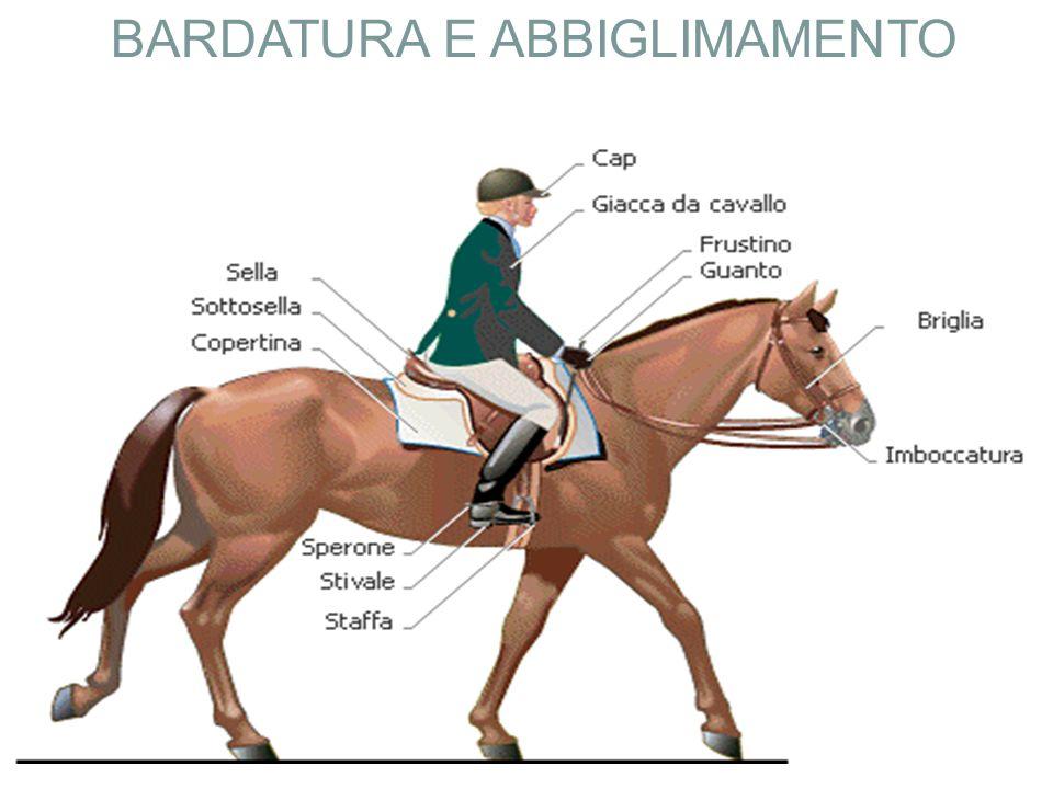 BARDATURA E ABBIGLIMAMENTO