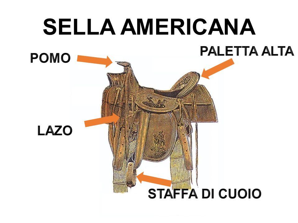 SELLA AMERICANA