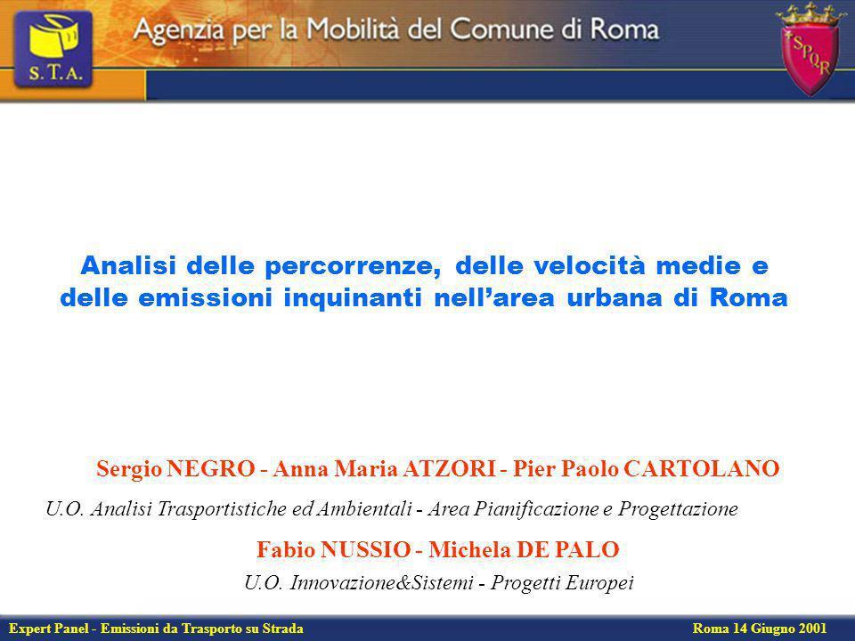 Expert Panel - Emissioni da Trasporto su Strada Roma 14 Giugno 2001 Flussi privati e velocità medie nellarea centrale