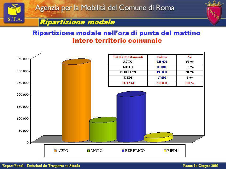 Expert Panel - Emissioni da Trasporto su Strada Roma 14 Giugno 2001 Flussi passeggeri rete di trasporto pubblico (ferro)