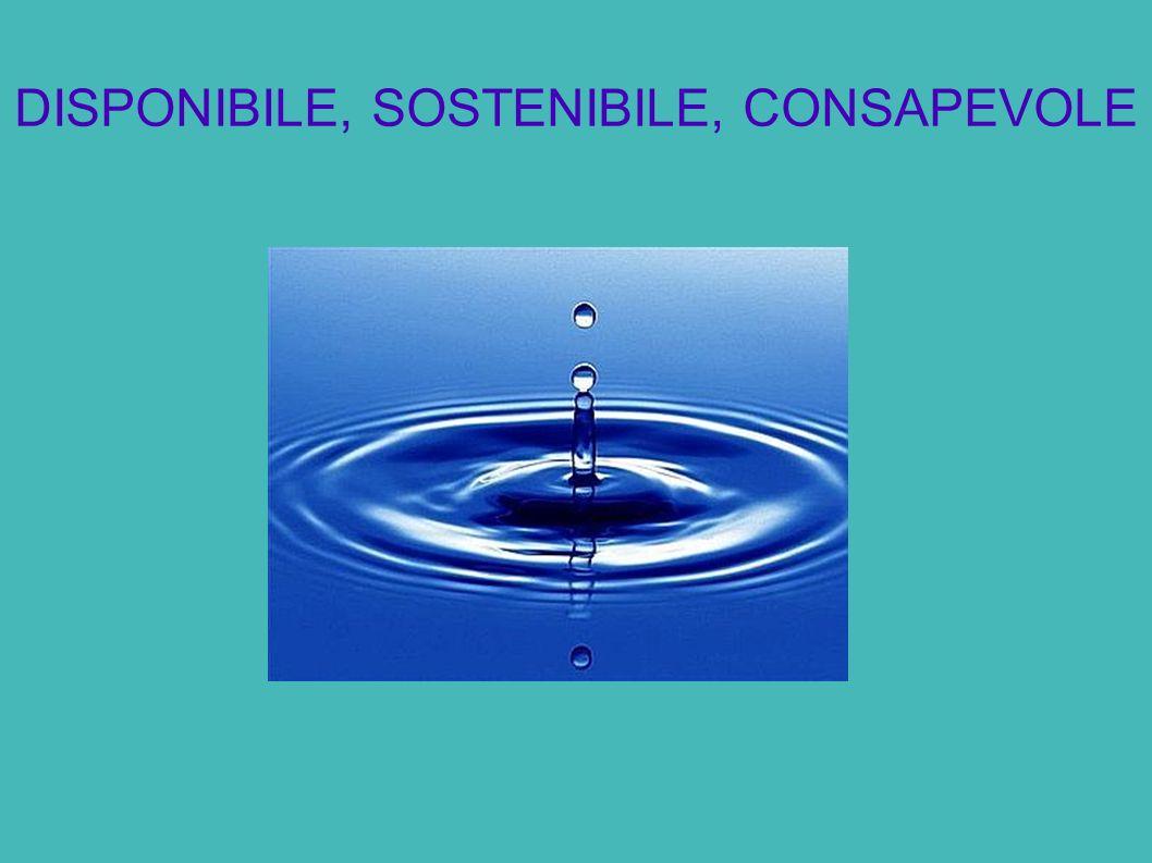 DISPONIBILE, SOSTENIBILE, CONSAPEVOLE